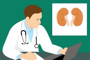 补充蛋白质要有度 东华原医疗人体成分分析仪助力科学健身